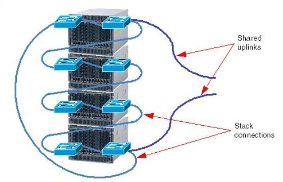 Cisco Catalyst Switch Module